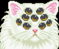 The cat with nine eyes (Gif) http://newsoffmag.blogspot.com.es/2014/11/the-cat-with-nine-eyes-gif.html