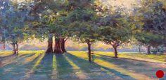 Behind The Trees, Amanda Houston
