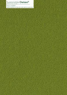 Olive CHQ087