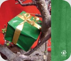 Green Christmas Present | @FairMail - Fair Trade Cards - S114-E