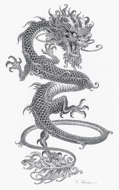 Crazy thin Chinese dragon tattoo with gray ink - tattoo ink . - Crazy thin Chinese dragon tattoo with gray ink – Tattooimages. Body Art Tattoos, Sleeve Tattoos, Tatoos, Tattoo Ink, Tattoo Drawings, Zen Tattoo, Tattoo Illustrations, Illustration Tattoo, Crazy Tattoos