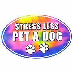 Pet a dog.