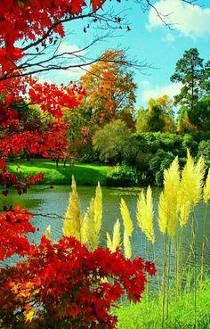##BeautifulNature - Lajos Kiss - Google+