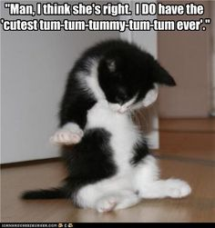 """Man, I think she's right. I DO have the 'cutest tum-tum-tummy-tum-tum ever'."" http://cheezburger.com/5066675712"
