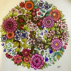 Hooray! finally finished the 4th page from Johanna Basford's Secret Garden!!!