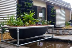Making a DIY clip-together Bathtub Aquaponics System