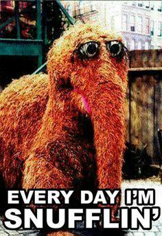 Snuffy Snufflupagas-Sesame Street