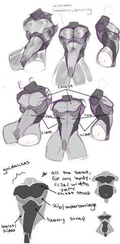 Torso drawing tips
