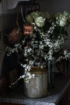 vårblomst og rose