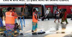 नए ट्रेन चालकों की नियुक्ति रेलवे भर्ती बोर्ड के कोटे से होगी। नई नियुक्ति से पूर्व की विभागीय तैयारी शुरू है। दरअसल, रेलवे में स्टेशन मास्टर, गार्ड, वाणिज्य क्लर्क...
