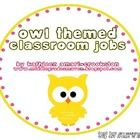 *For 196 pages of owl themed resources, see my Owl Themed Classroom set!*Includes:-20 different classroom jobs (alternating in eight differen...