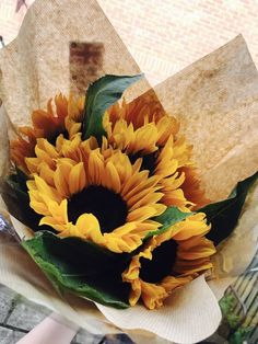 """""""Sunflowers steal my heart 🌻💛"""" My Flower, Wild Flowers, Beautiful Flowers, Paper Sunflowers, Plants Are Friends, Flower Aesthetic, Mellow Yellow, Planting Flowers, Floral Arrangements"""