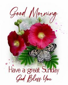 Good Evening Messages, Lovely Good Morning Images, Happy Sunday Quotes, Cake Decorating Piping, Have A Great Sunday, Friday Saturday Sunday, I Am Blessed, Good Morning Greetings, Christmas Wreaths