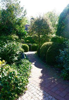 Arkitektens Trädgård - landskapsarkitekt - trädgårdsälskare - trädgårdsblogg Rooftop Terrace, Rooftop Gardens, Topiary, Vegetable Garden, Outdoor Spaces, Arch, Sidewalk, Patio, Balcony