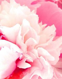Pastellica! « UPLO Blog