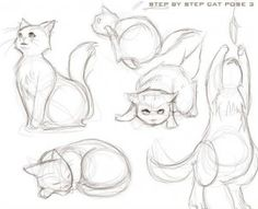 How to draw a cat | The Online Drawing Course
