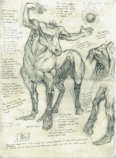 Virus Horse >>> Disgust embodied in one cursed sketch Mythical Creatures Art, Mythological Creatures, Magical Creatures, Fantasy Monster, Monster Art, Creature Concept Art, Creature Design, Arte Horror, Horror Art