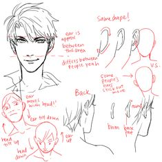 ChamiRyokuroi | kelpls: UMM PEOPLE ASKED ABOUT NOSES AND EARS SO...