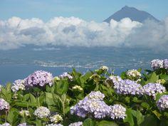 Fayal, Azoren. Uitzicht op Pico.