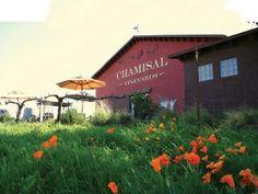 San Clemente Farmers Market - Sundays 9 a.m. to 1 p.m. - Orange Coast