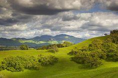 Diablo Spring #1 - Lafayette, California by PatrickSmithPhotography, via Flickr