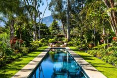 A long lap pool stretches through this yard and is bordered by a lush mix of tropical trees, shrubs and flowers. The gorgeous garden reflects in the pool's water. At the end of the pool, a relaxing seating area is perfect for enjoying the atmosphere and enjoying the sunshine.