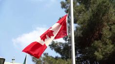 The Maple Leaf flag, also called the l'Unifolié (one-leafed), has been Canada's flag since February Prime Minister Lester B. Canadian History, Flag, Outdoor Decor, Science, Flags