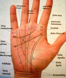 Hand Lines, Palmistry, Numerology, Utila, Vintage Art, Google, Astrology, Magick, Per Diem