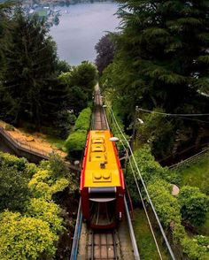 Get rich or die tryin - Lake Como feeling! Lamborghinis everywhere. And a lovely funicular! Try it if you around, it is fun! Brunate is lovely! Join us : epicgust.com #lake #como #lakecomo #comersee #city #funicular #Brunate #Italy #travel #sightseeing #altitude #rich #wealthy #gold #like #share #picoftheday
