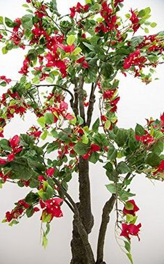 Faux Bougainvillea Tree, 5 Feet High, Red Flowers, Green Plastic Growers Pot *** Read more reviews of the product by visiting the link on the image.