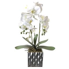 Package Included: 1 Artificial Orchid Flower with Pot. Artificial Orchids, Artificial Flower Arrangements, Flowers Australia, Home And Living, Living Room, Perth, Flower Pots, Latex, Decor Ideas