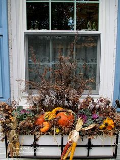 Thanksgiving window boxes filled with kale, gourds, dried seed heads and flowers, pine cones and Indian corn. (Garden of Len & Barb Rosen)