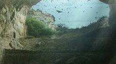 Epic Moments in Nature: Bat Flight, Carlsbad Caverns National Park, Bucket List