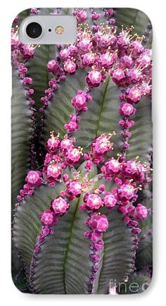 All The Cactus Are Happy Phone Case by Marlene Williams