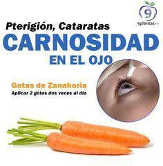 Carnosidad En El Ojo Aplicar 2 Gotas De Jugo De Zanahoria Dos Veces Al Dia En Las Mananas Y En Las Noches Puedes Health Remedies Herbal Medicine Herbalism