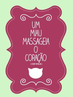 COM CERTEZA! #catlovers #gato #maedegato #paidegato #petshop #petmeupet