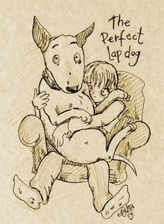 Bull Terrier drawing — 'The Perfect Lap Dog!'