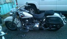 Harley bike week sep 2013