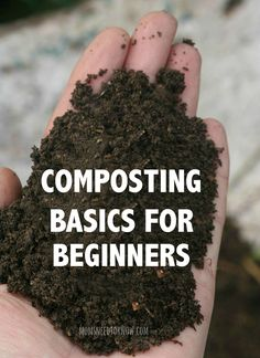 1000 Images About Gardening On Pinterest Crop Rotation Companion Planting