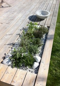 Terrific idea to brink plants right into your deck. This is the perfect place to have plants that can repel mosquitoes like lemongrass and citronella geraniums! Back Gardens, Small Gardens, Outdoor Gardens, Scandinavian Garden, Wooden Decks, Wooden House, Terrace Garden, Garden Bed, Balcony Gardening