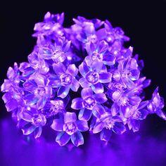 22.96ft 50 LED Outdoor Bulb String Globe Warm White Details about  / Globe Solar String Lights