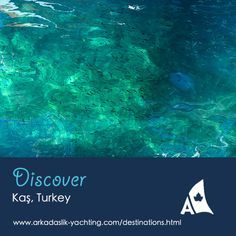 With sparkling clean water allowing for visibility of up to 40 meters, the region is a scuba divers paradise.