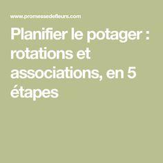 Planifier le potager : rotations et associations, en 5 étapes
