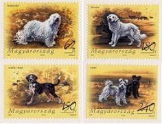 kuvasz stamp