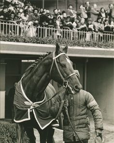 Secretariat, the horse of the century retires. Aqueduct Race Track is the scene of the farewell to the greatest race horse this century His loyal legions turned out to see Big Red parade for the last time on a race track before his journey to stud at Claiborne Farm.