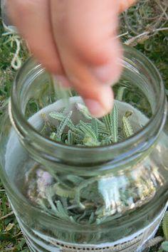 The Magic Onions :: A Waldorf Inspired Blog: Lavender Perfume.