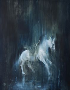 White horse in motion 1. ©Jake Wood-Evans
