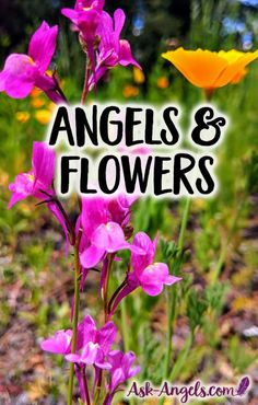 Angels and Flowers!