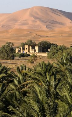 Learn all about the secret places in the world famous Morocco's Sahara Desert Guide! Learn all about the secret places in the world famous Morocco's Sahara Desert Guide! Desert Life, Desert Oasis, Beautiful World, Beautiful Places, Places To Travel, Places To Go, Desert Sahara, Desert Aesthetic, Deserts Of The World