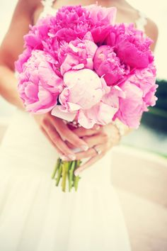 gorgeous peonies!